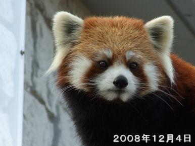 Zoophoto2189